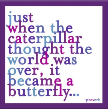 quote - caterpillar